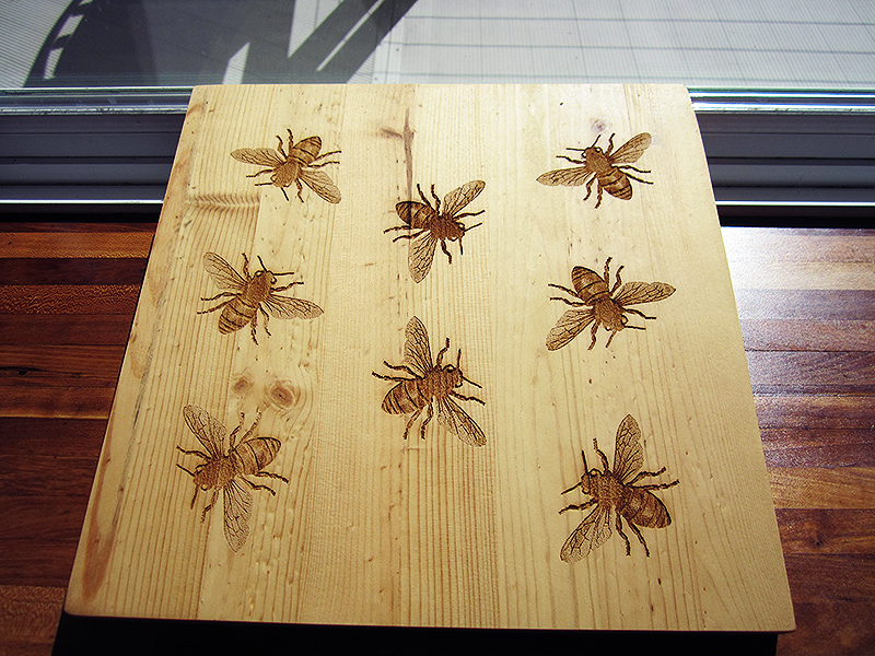 Untitled bees- Laser engraved pine